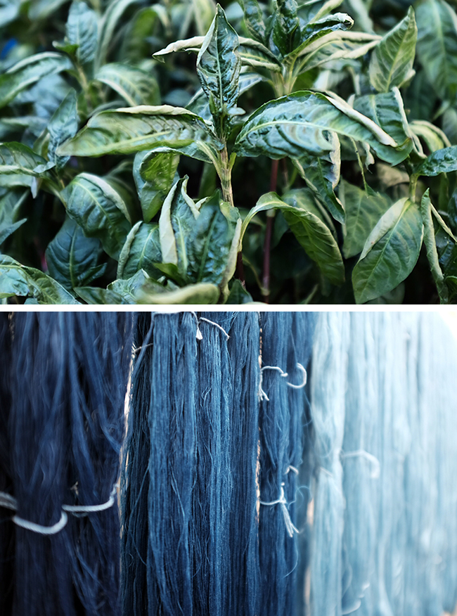 What I Know About: Natural indigo (with Kristine Vejar)